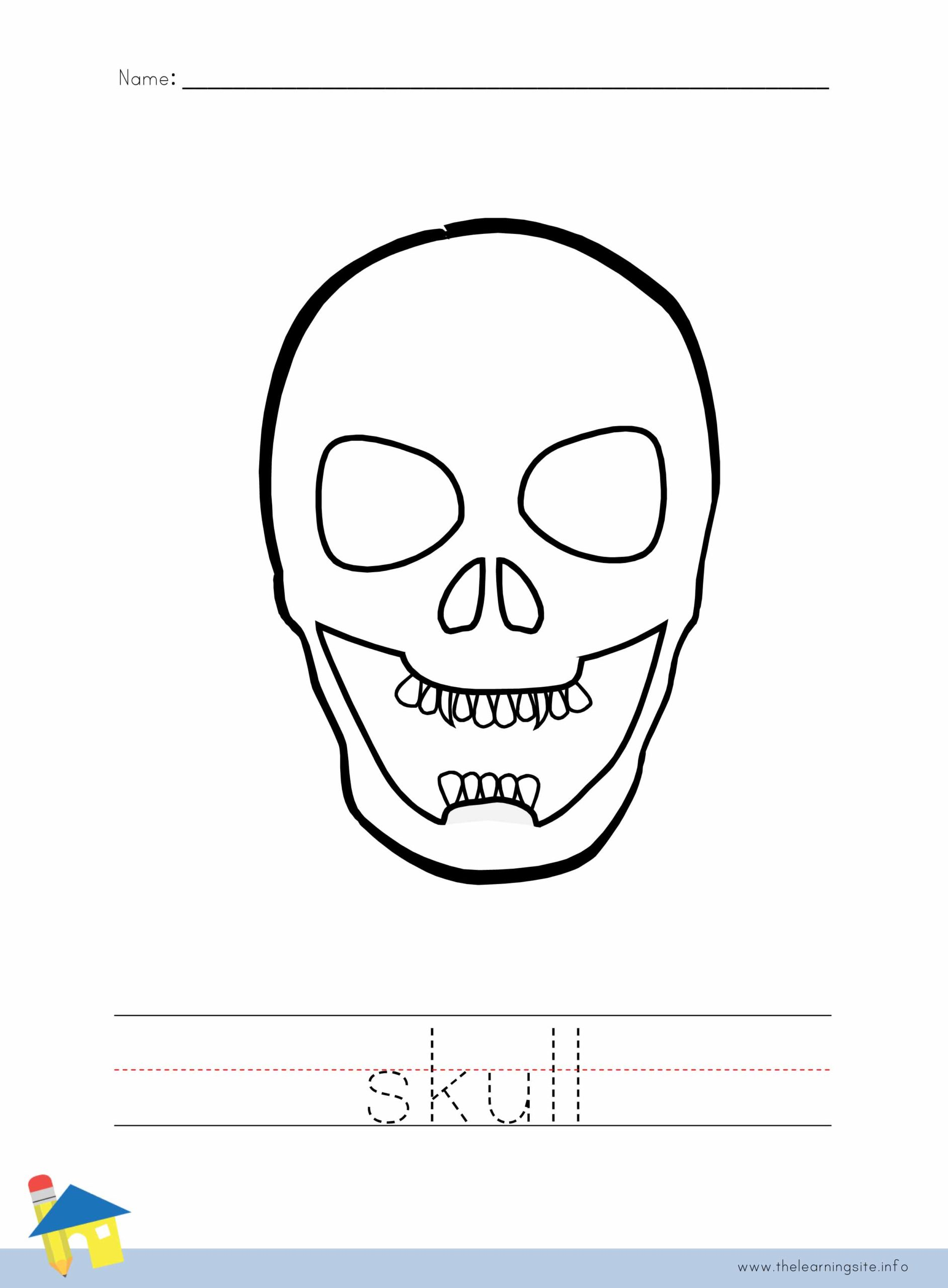 Skull Coloring Worksheet The Learning Site