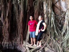 The humongous balete tree