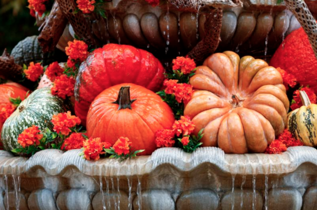A bounty of fall pumpkins and flowers are displayed at the Tlaquepaque Arts and Crafts Village in Sedona, Ariz. The first Thanksgiving feast was marked in 1621 at Plymouth to celebrate a good harvest. Thanksgiving is celebrated Nov. 24 this year. (CNS photo/Nancy Wiechec)