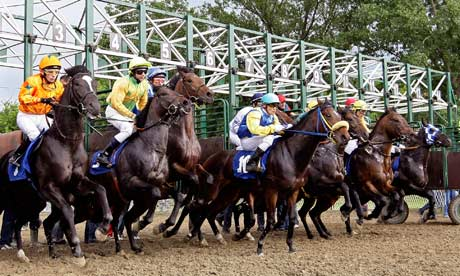 Image result for race horses starting gate