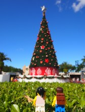 Gazing up at the massive Christmas tree