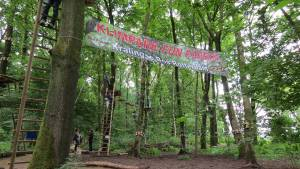 klimpark-fun-forest-rotterdam