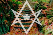 12 Steps of True Will in Thelemic Recovery