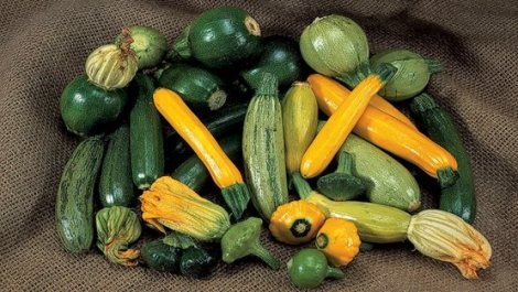 Courgettes, great for practising your chopping skills
