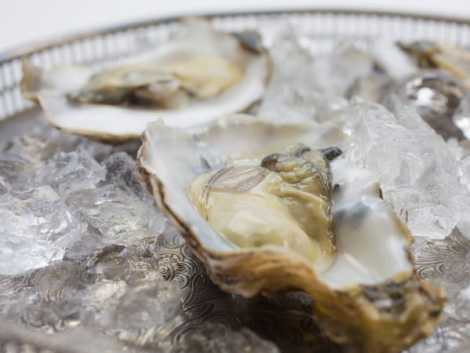 Oysters from Cornwall's Helford River