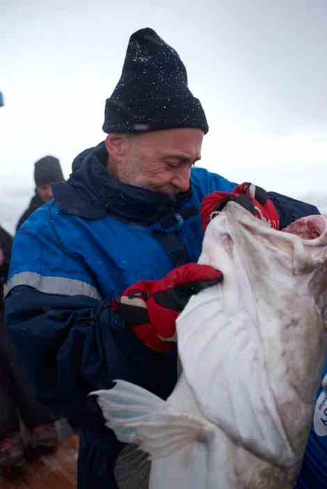 Michel Roux Jr takes a closer look at a Skrei