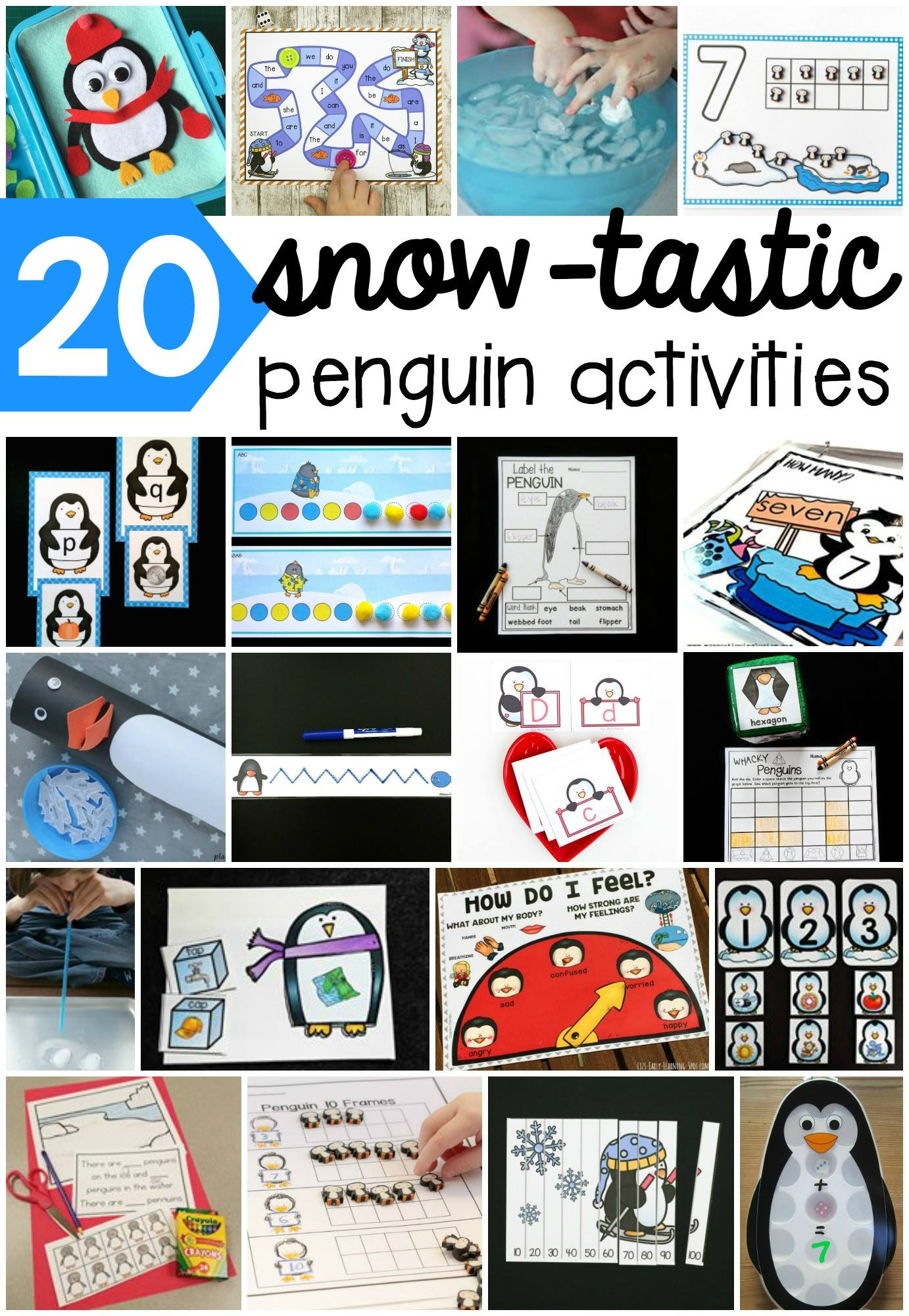 Parts Of A Penguin Labeling Printable