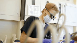 The Libby Group Dr Justin Libby Dental Cleaning Crowns Implants Anchorage 2