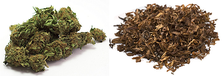 , Why is consuming cannabis with tobacco so common in the UK?, ISMOKE