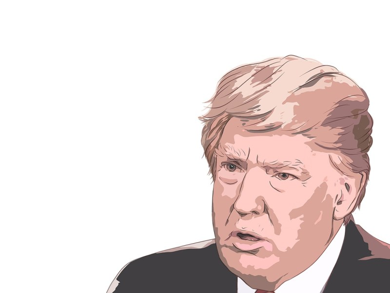 donald trump, president of the united states, donald
