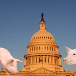 Coronavirus relief, COVID relief, Congress, pork, wasteful spending, government responsibility,