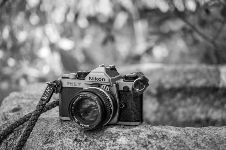 기계식 필름카메라, 니콘 FM2