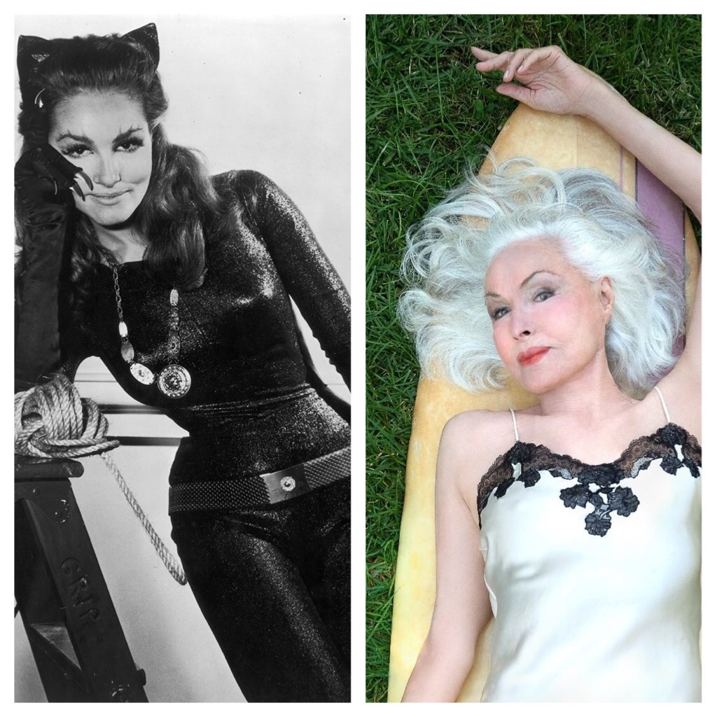Catwoman Julie Newmar releases new portrait for her 86th birthday - The  Life & Times of Hollywood