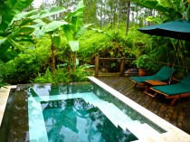 Our private plunge pool