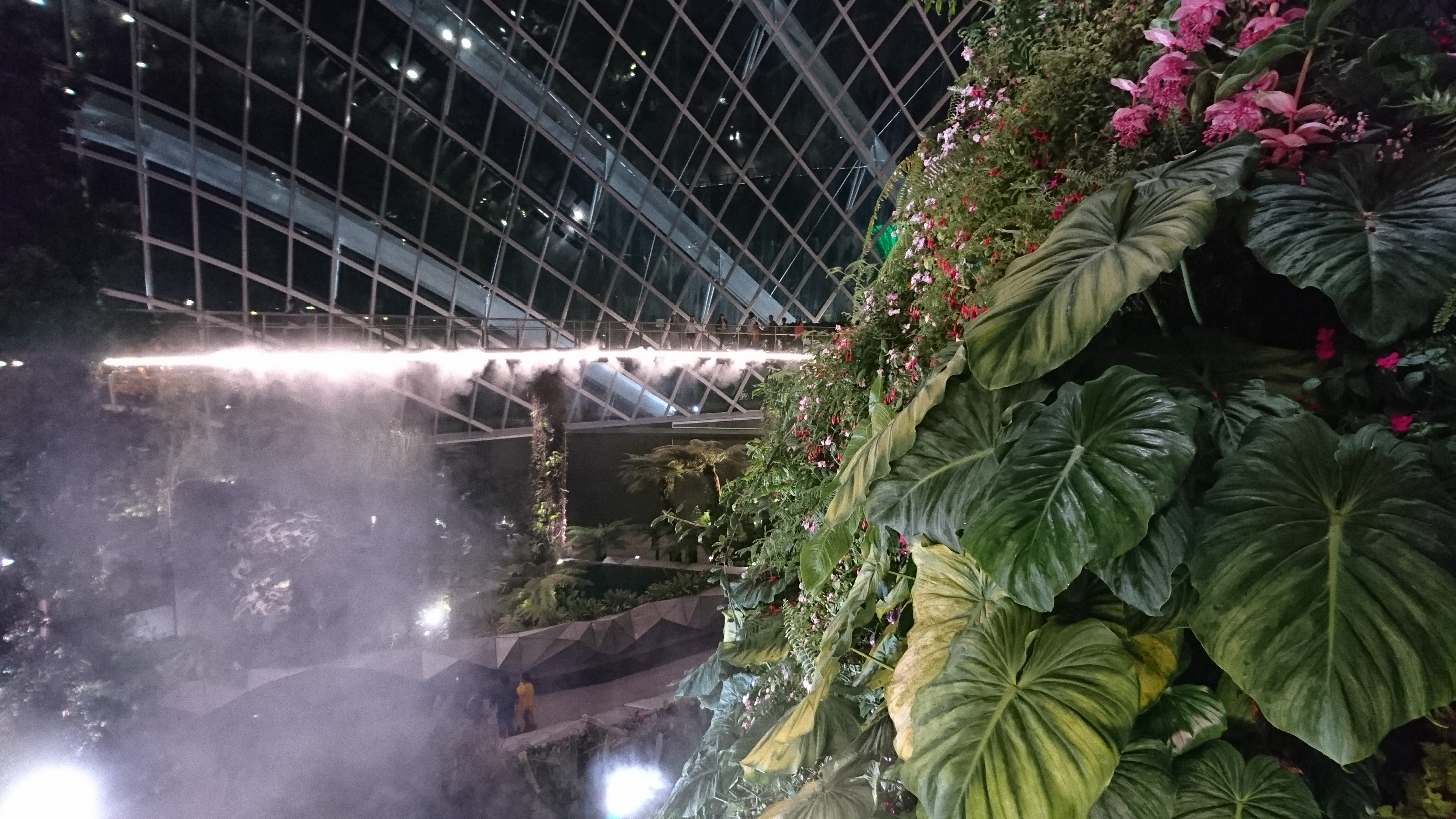 Cloud Forest; Gardens by the Bay; Singapore