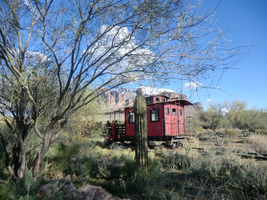 Arizona Desert Winter