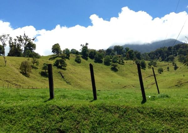 The rolling hills of Cerro Punta.