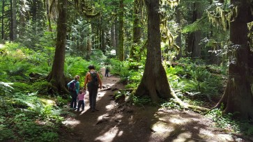 Old Salmon River Trail 2016-7-1 (127 of 158)