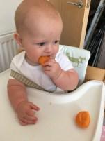 Yummy apricots