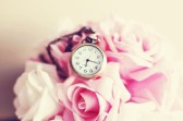 cute-flowers-pink-rosas-roses-watch-Favim.com-54022