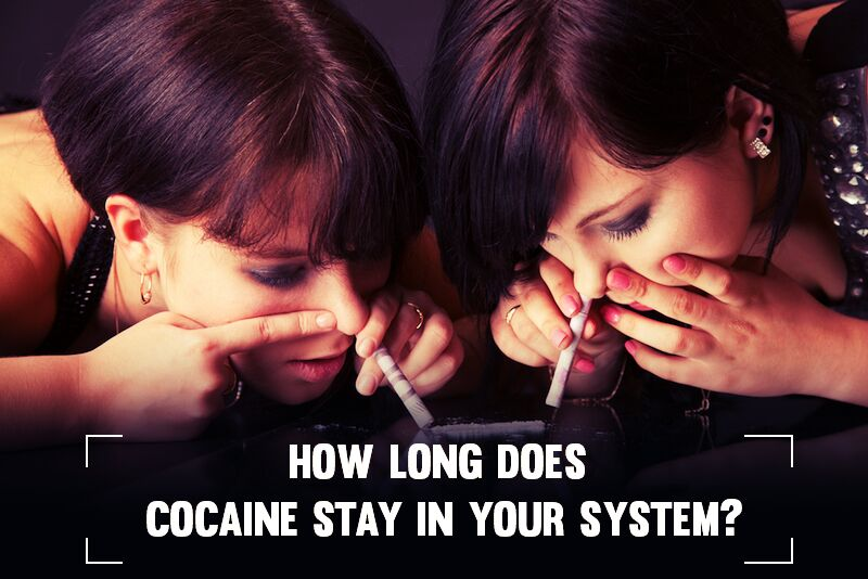How Long Does Cocaine Stay In Your System Know Some Secrets