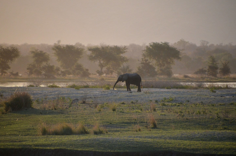 Zimbabwe - Mana pools