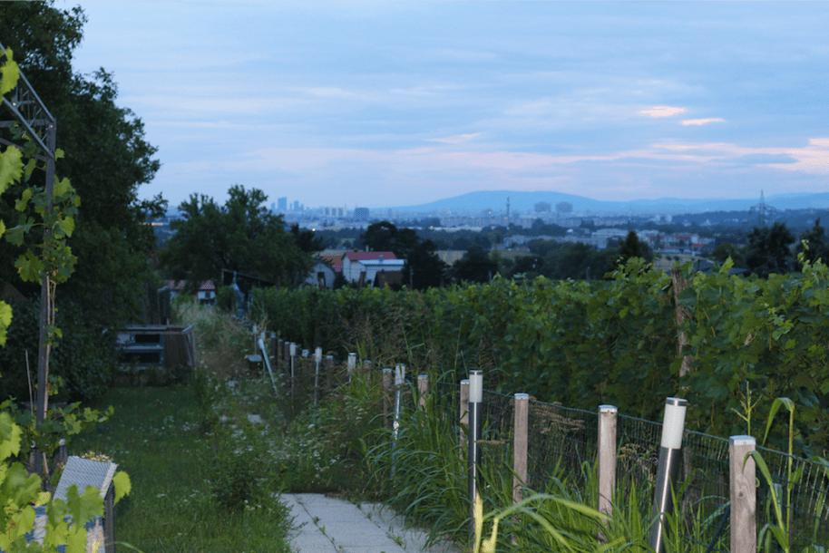Sky terrace - Restaurant - Vienna - Austria