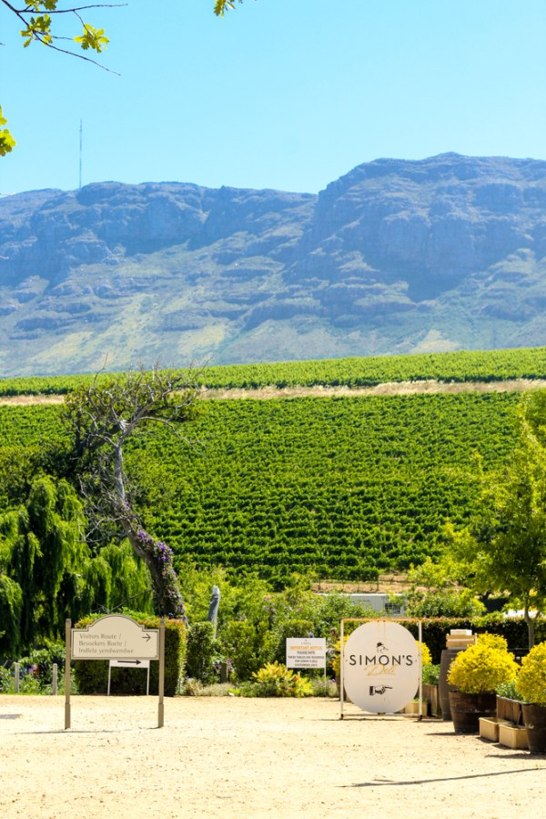 Constantia Wine Valley Cape Xtreme Tour-Cape Town-South Africa