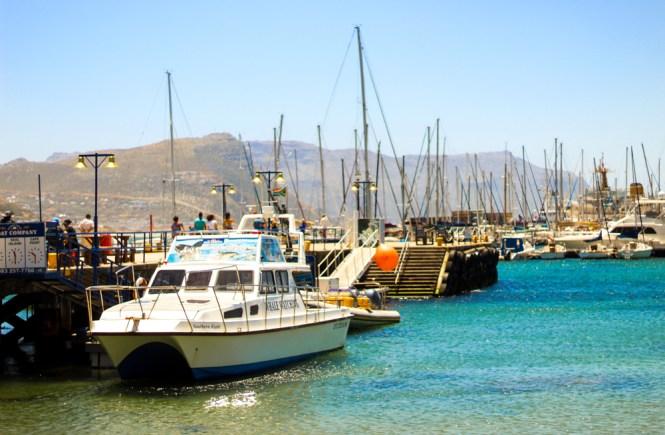 Kalk Bay Cape Xtreme Tour-Cape Town-South Africa