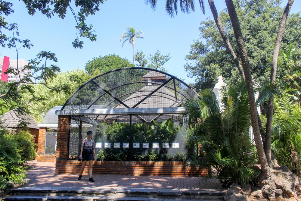 Aviary Companys Garden - Cape Town - South Africa