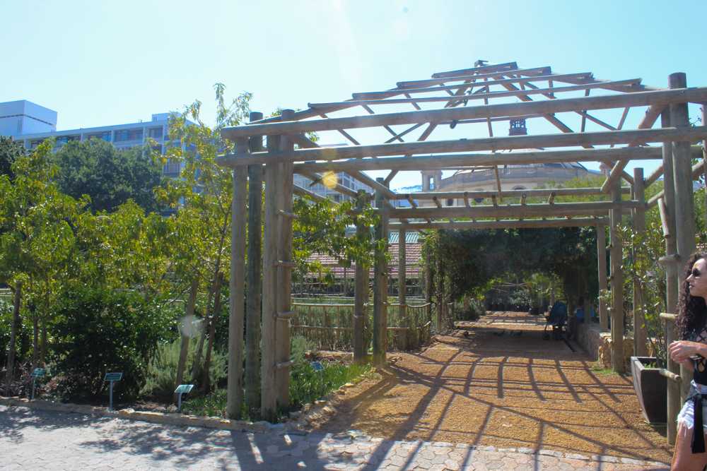 Companys Garden - Cape Town - South Africa