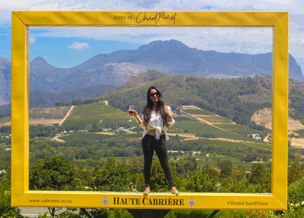 Wine Tour Wine Flies - Cape Town