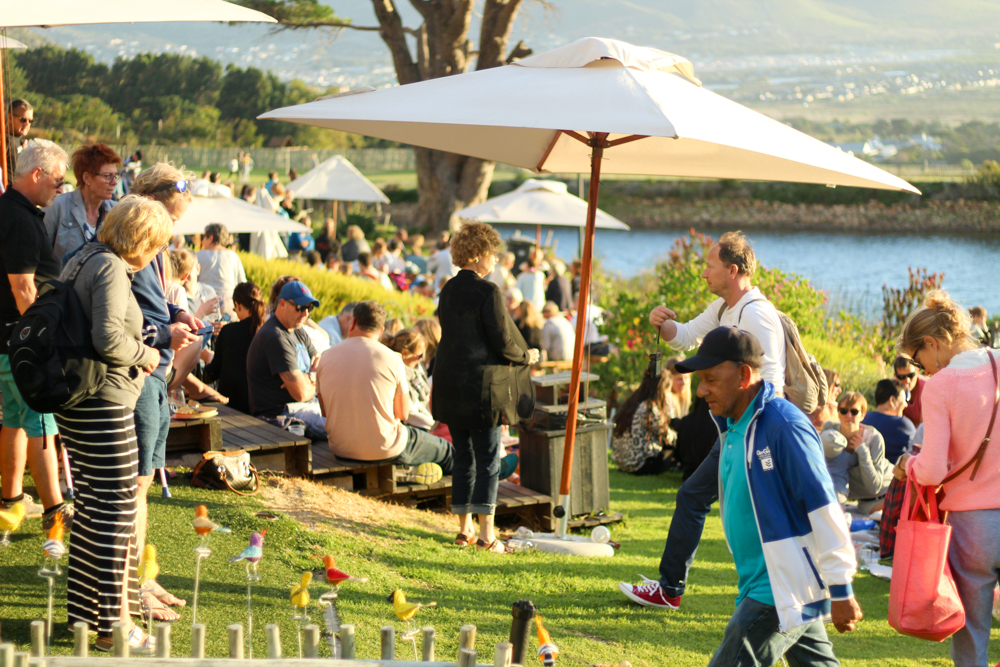 Cape Point Vineyards - Cape Town - South Africa