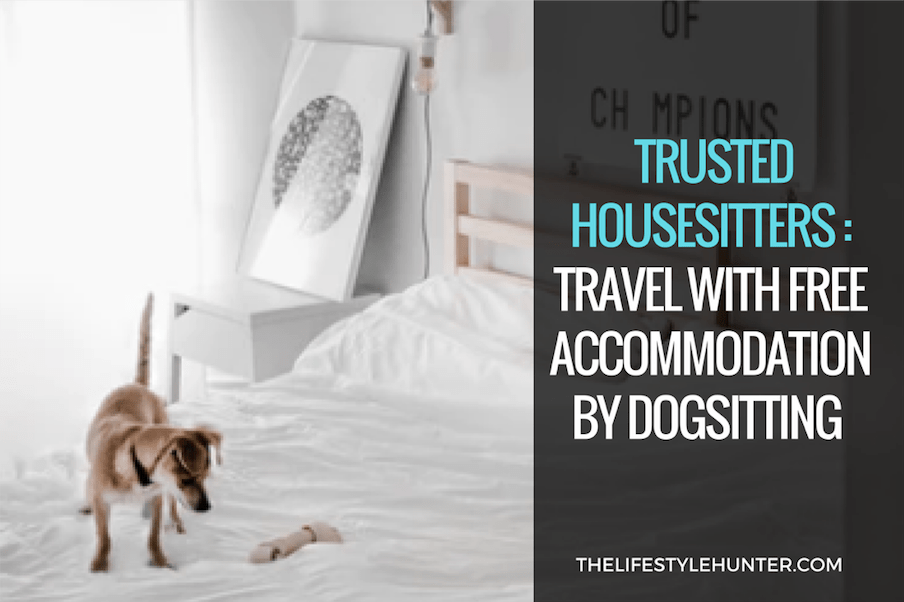Trusted Housesitters: travel with free accommodation by dog sitting