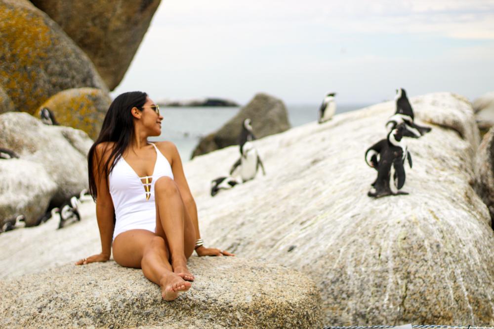 Boulders Beach - Kapstadt - Südafrika
