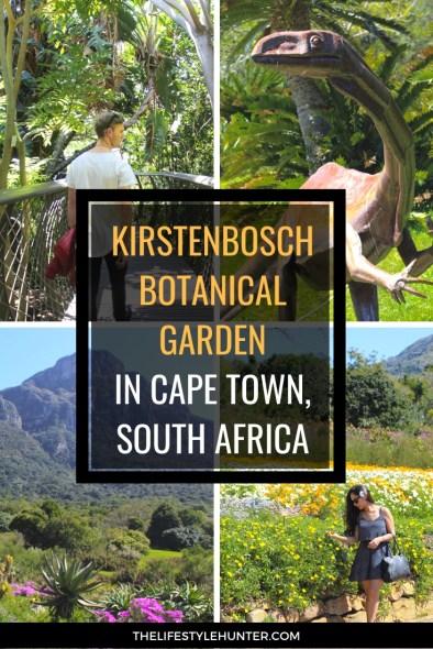 Travel - South Africa - Botanical Garden Kirstenbosch