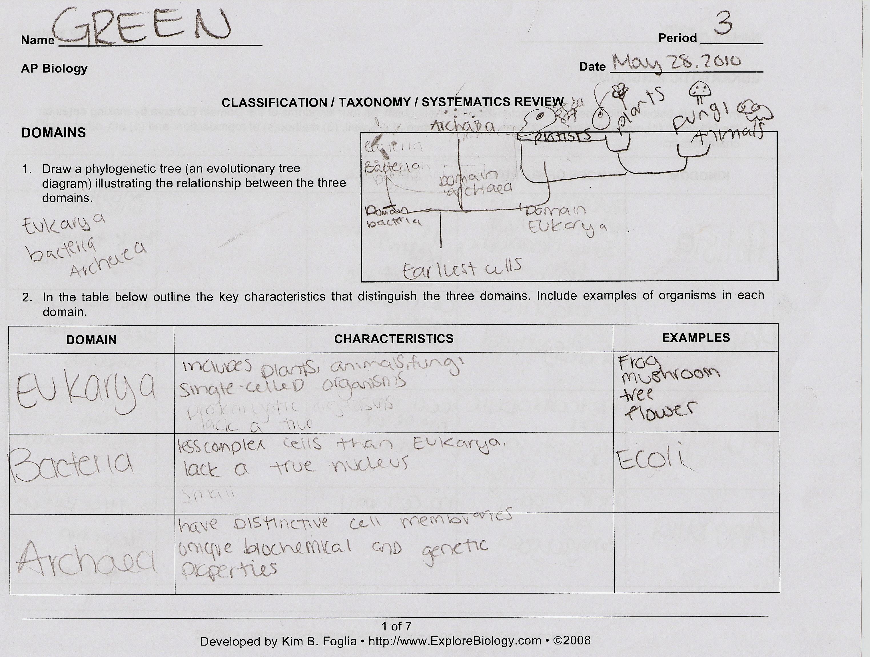 Kelsi S Ap Biology Sheet