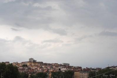 Lyon-8775