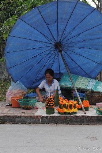 Laos-4025