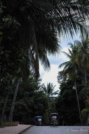 Laos-4070