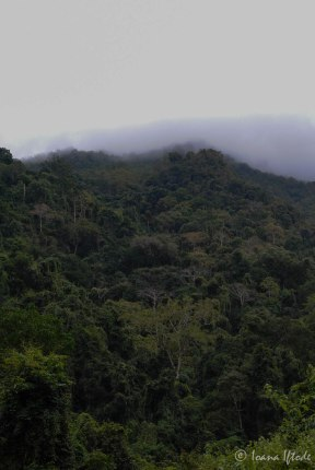 Laos-4152