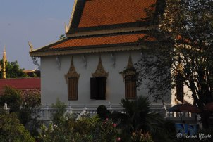 Cambodia-5419
