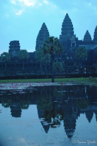 Cambodia-5516