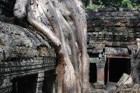 Cambodia-5734