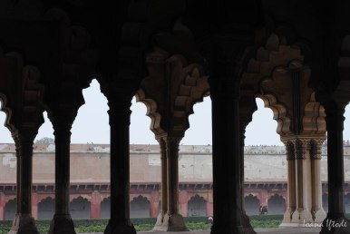 India-0528