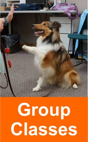 group_classes_2