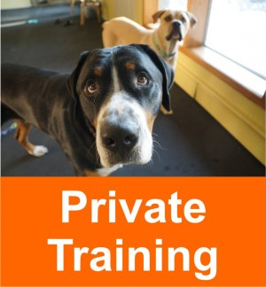 private_training_2