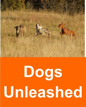 dogs_unleashed_2
