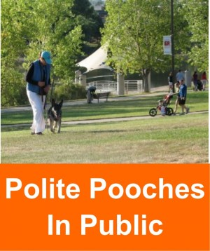 polite_pooches_in_public_2