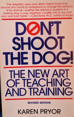 Don't Shoot The Dog